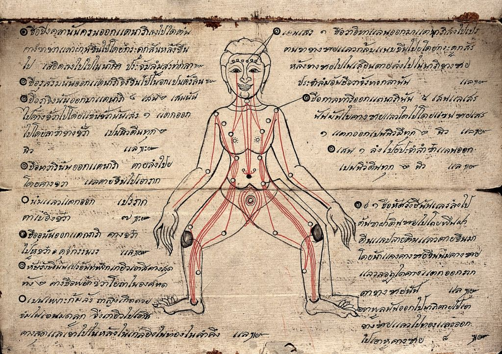 Siamese Manuscript. A guide to pressure points for use in 'Thai Yoga Massage'. Source: Wellcome Collection gallery
